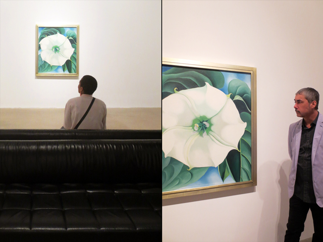 at georgia okeeffe exhibition ago flower section