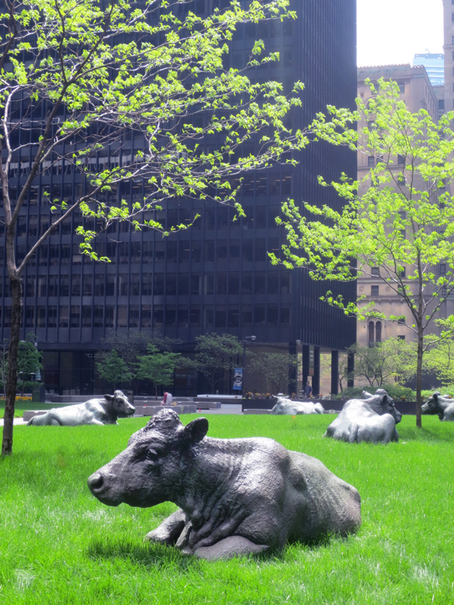 the pasture by joe fafard cow sculptures downtown toronto