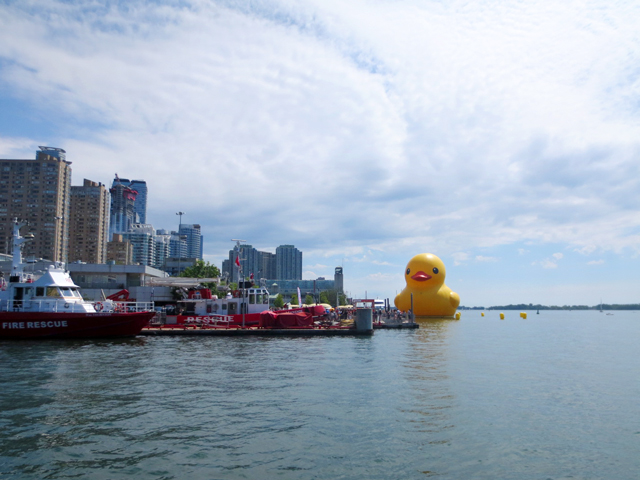 big rubber duck in toronto harbour summer twenty seventeen