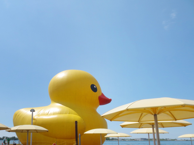 big rubber duck in toronto