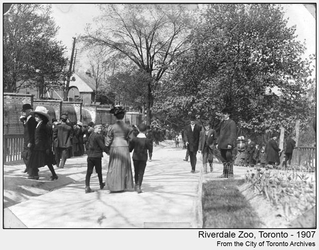 historic photo riverdale zoo toronto 1907