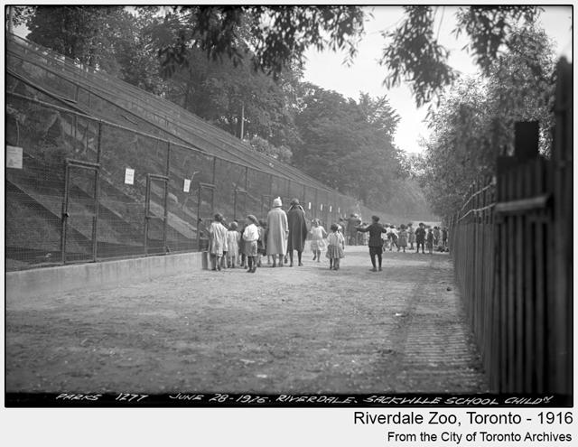 historic photo riverdale zoo toronto 1916