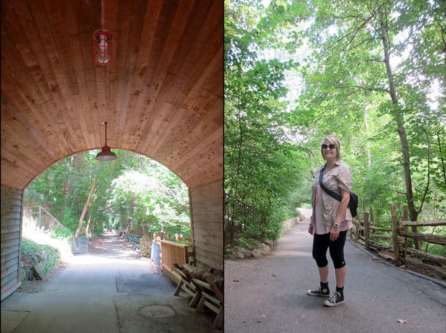 on the paths at riverdale farm toronto