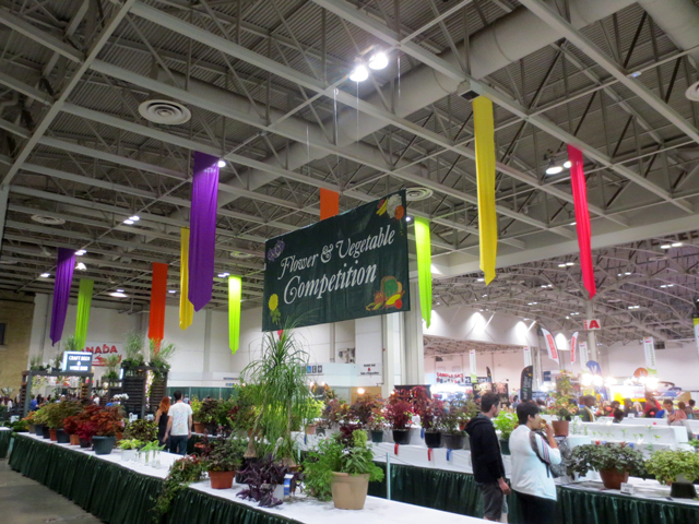 flower and vegetable growing competition area at cne toronto