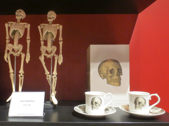 skeleton gifts at ago toronto pop up gift shop for guillermo del toro at home with monsters exhibition