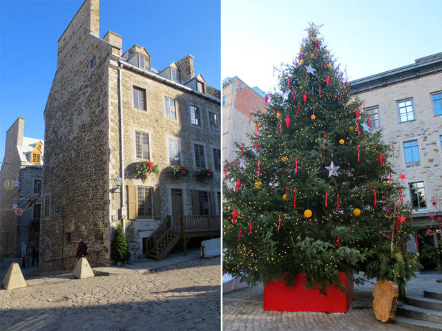 christmas tree in old lower town historic quebec city