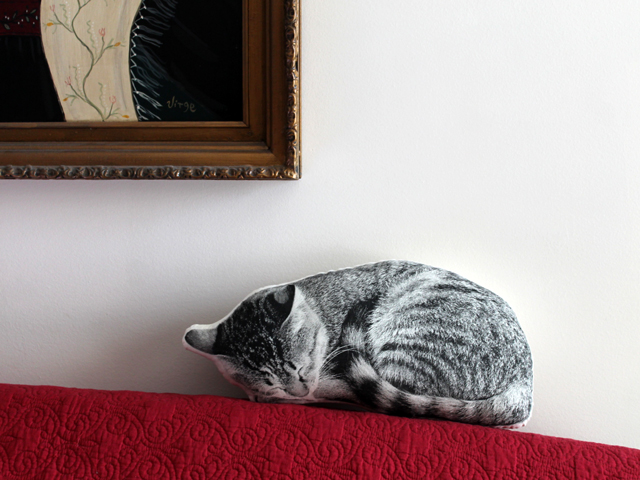 broderpress sleeping cat pillow christmas gift looks like our cat eddie