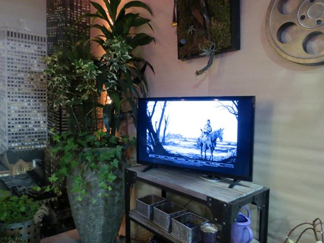balcony garden movie night in technicolour tv at canada blooms garden show toronto