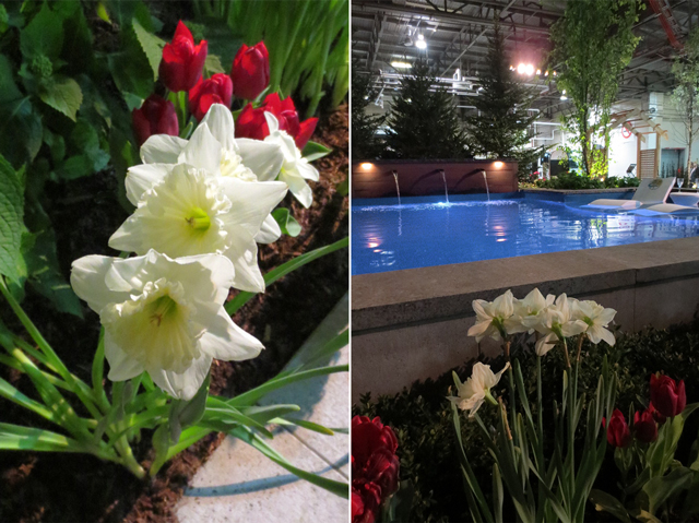 oscars after party garden at canada blooms horticulture festival toronto