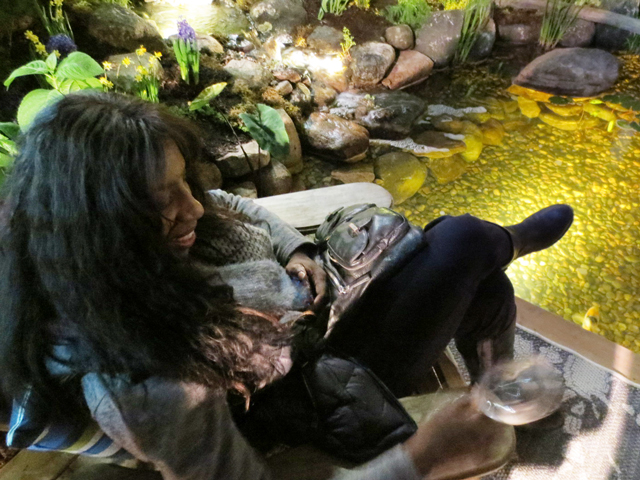 relaxing by the pond in the this is our movie garden at canada blooms festival toronto
