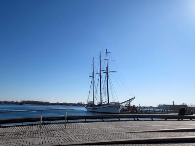 sailboat toronto waterfront