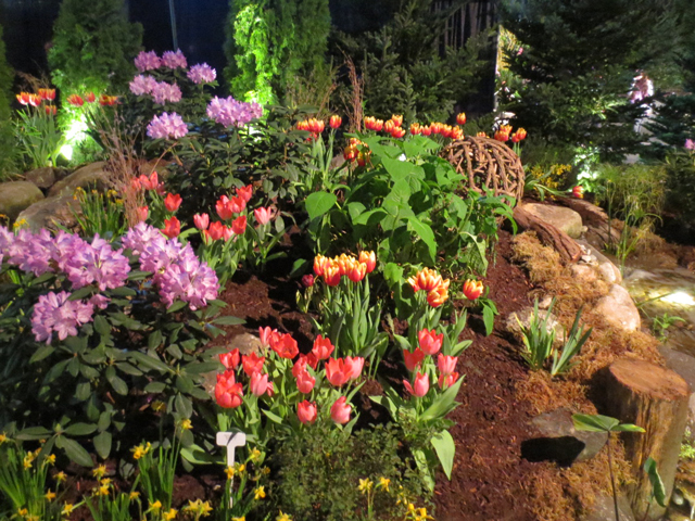 this is our movie by jackson pond flowersl at canada blooms garden show toronto