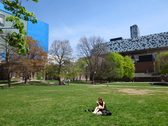 ocad and ago from grange park