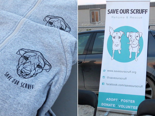 save our scruff dog rescue and rehoming organization toronto