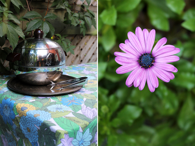 vintage ice bucket and purple african daisy