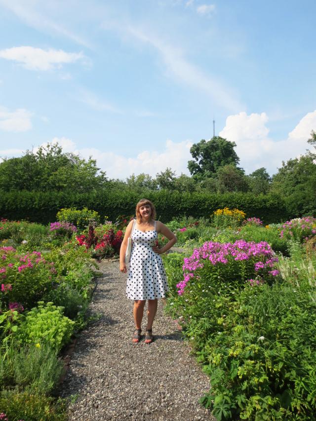 a in the garden