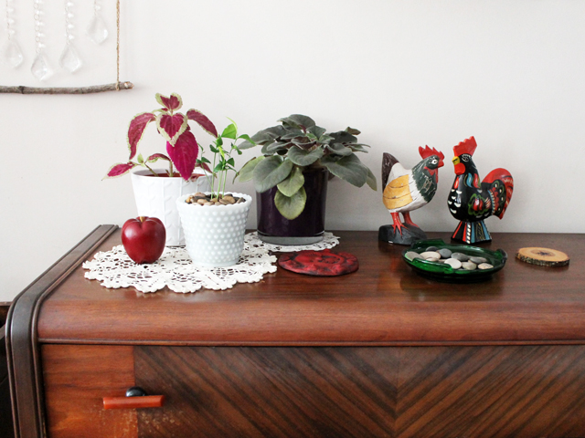 autumn decor thrifted and plants