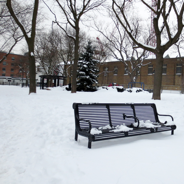 a bench in the snow toronto in winter