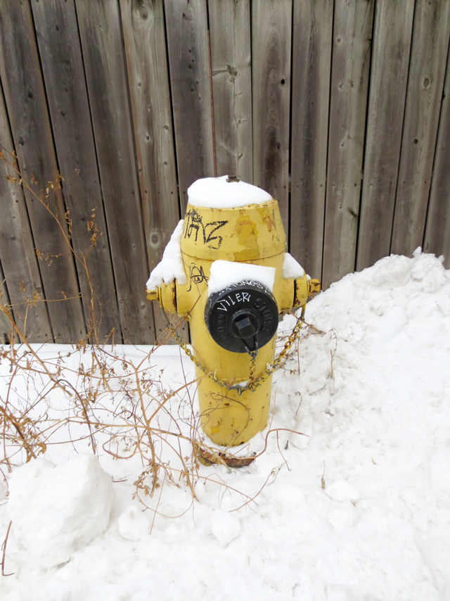 fire hydrant in the snow toronto winter