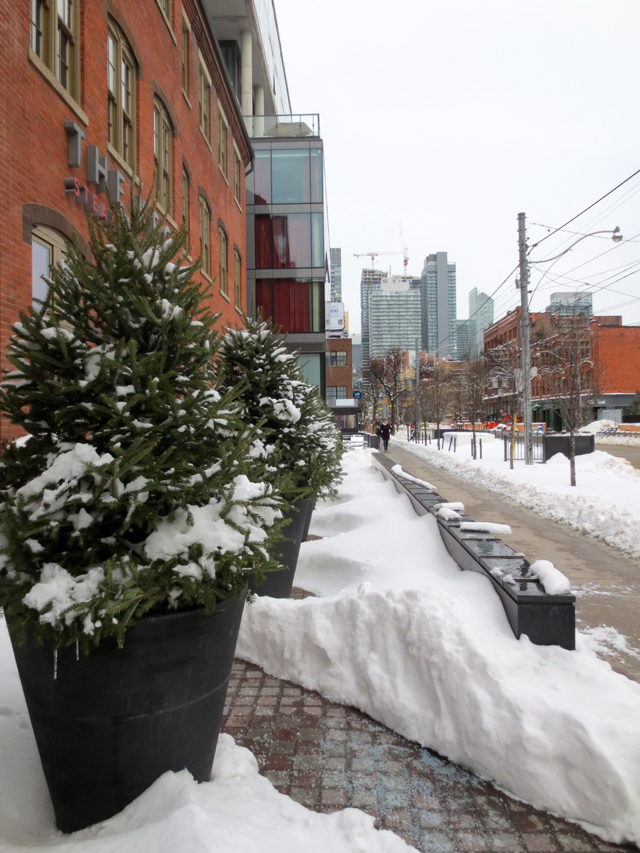 king street west toronto after a snowstorm