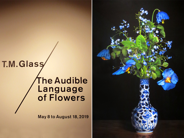 artist tm glass the audible language of flowers at onsite gallery ocadu toronto contact photography festival 2019